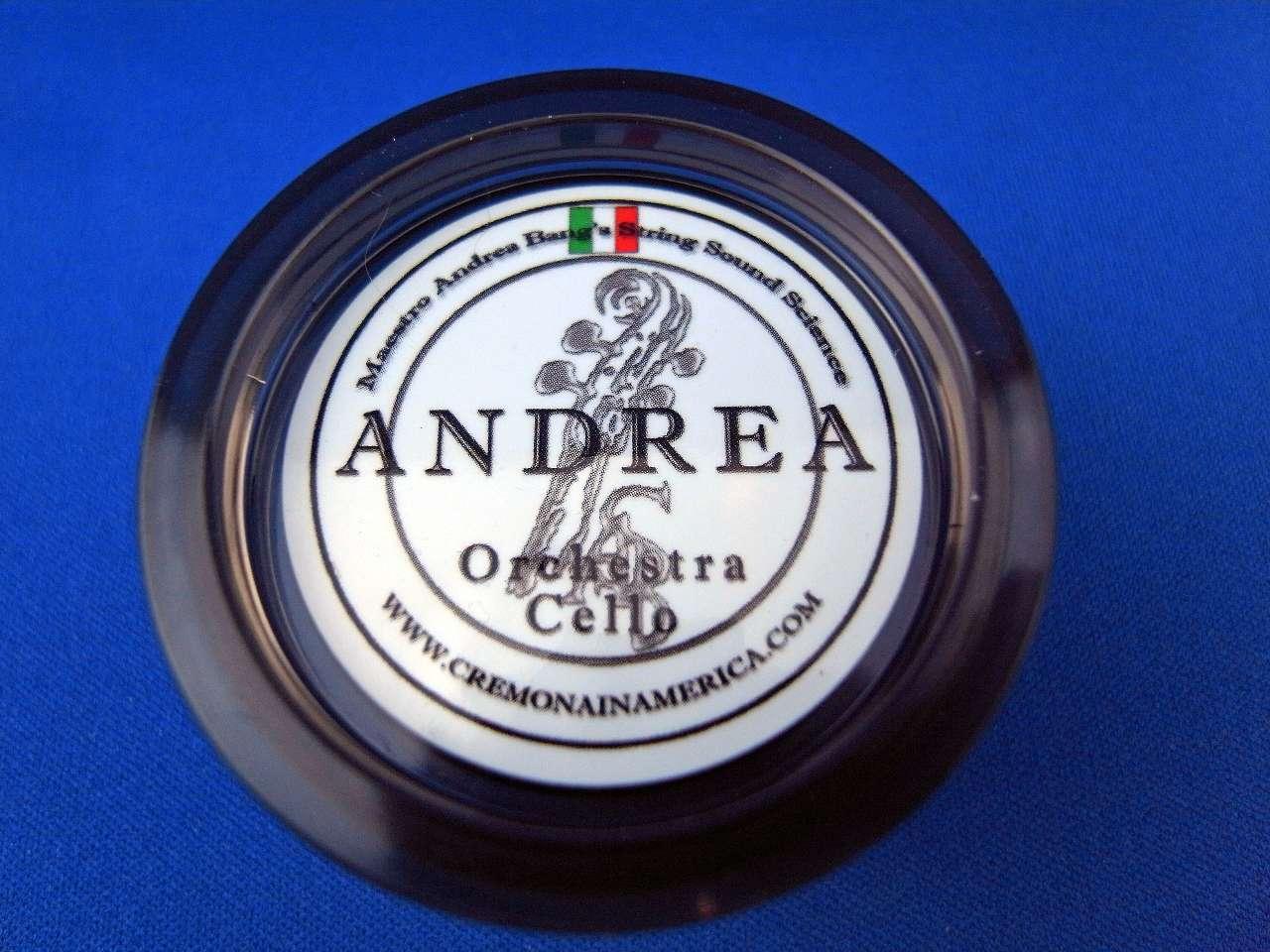 画像1: アンドレア・ロジン「オーケストラ・チェロ」 Andrea Rosin「Orchestra Cello」